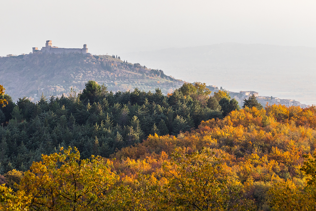 Visitare Assisi a novembre